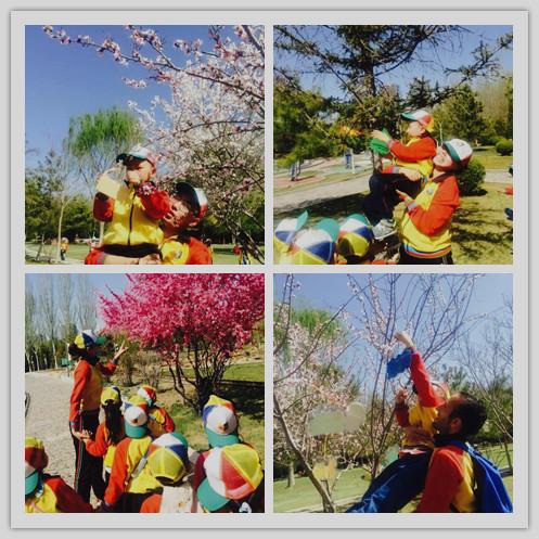 小小环保卫士2 精彩回顾,新闻快递,鲁银男孩女孩国际幼儿园
